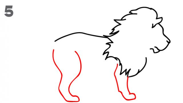 kako-nacrtati-lava-slika-5