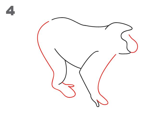 kako-nacrtati-majmuna-slika-4