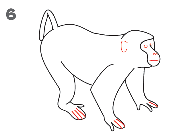 kako-nacrtati-majmuna