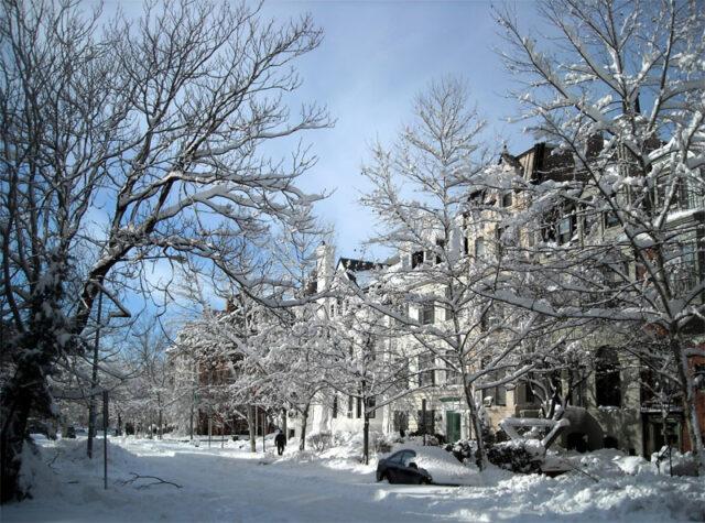 ulica-pod-snegom